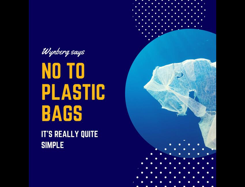 International Plastic Shopping Bag Free Day