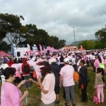 Wynberg joins Pink Drive (2)